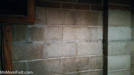 Basement wall unfinished